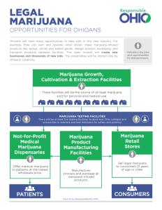 Responsible Ohion malli liiketoimintojen aloittamisesta kannabiksen kanssa.
